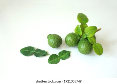 Kaffir lime thai lemon isolated on white background. Top angle view of Bergamot fruit with stem and leaf. Green citrus thai lime ingredient for cooking
