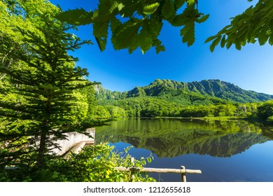 """""""Kagami ike"""" pond at Togakushi Village in Nagano Prefecture of Japan.Togakusi mountain reflects in that pond.Fresh green is beautiful."""