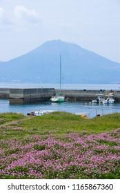 Kagoshima Bay in Spring