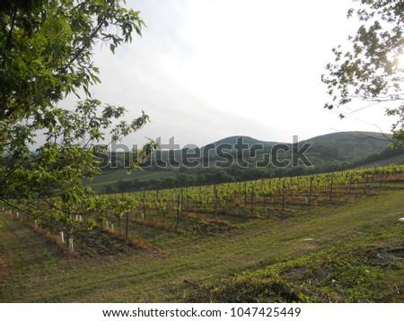 Kahlenberg Wien Im Herbst Stock Photo Edit Now 1047425449