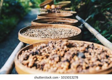 Kahlua coffee process