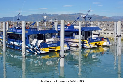 Kaikoura, New Zealand - December 15, 2017: Whale Watch Kaikoura New Zealand boats are once again in business after 12 months cleanup following dramatic November 2016 Earthquake.