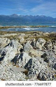 The Kaikoura Peninsula was raised 1.25 metres by a massive Earthquake in November 2016. One year later and the green rocks in this photo were previously under water even at low tide.