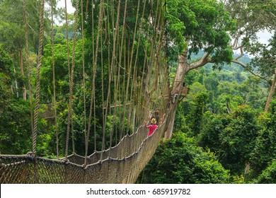 Kakum National Park Ghana Canopy Walk