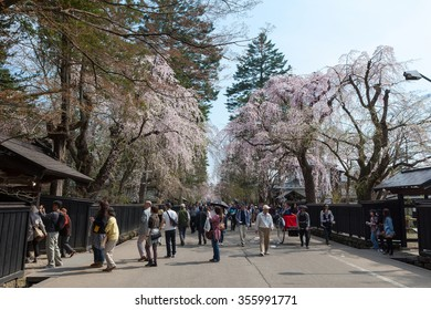 Kakunodate city,Akita,Japan - April 27,2014 : Cherry blossoms or Sakura in Samurai district.