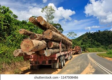 Kalabakan, Sabah, Malaysia - May 20 2014: Logging trucks with tropical timbers from a jungle logging site on the way to Tawau Port, Sabah, Malaysia