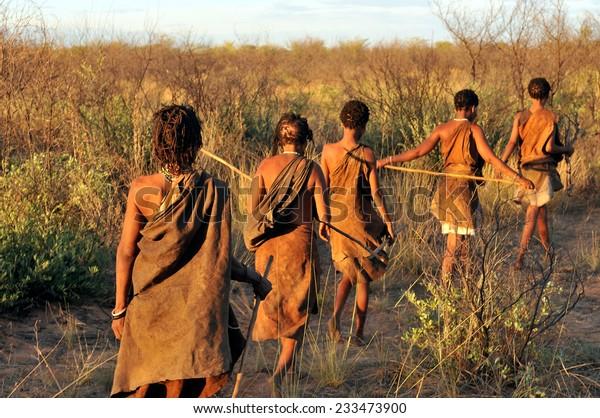 KALAHARI, BOTSWANA - DECEMBER 31, 2008: bushmen in the desert walking in a line