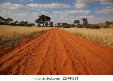 Kalahari desert road
