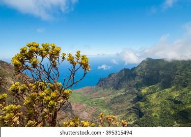 Kalalau Lookout on a Sunny Day in Kauai Hawaii