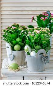 Kalanchoe blossfeldiana decorations. Simple home arrangements with springtime flowers.