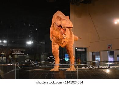 KALASIN, THAILAND - JULY 21, 2018 : Dinosaur Fossil at Sirindhorn Museum (Sirindhorn Dinosaur Museum) is a geology museum in northeast Thailand. Natural Sciences Dinosaur Fossils