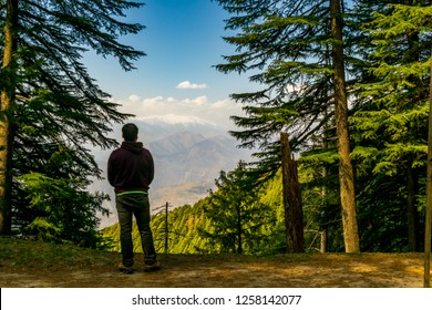 Kalatop Wildlife Sanctuary- through a clearing in the forest, a glimpse of the snow capped mountain range in the distance