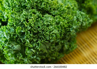 Kale or borecole is a vegetable which is considered to be closer to wild cabbage
