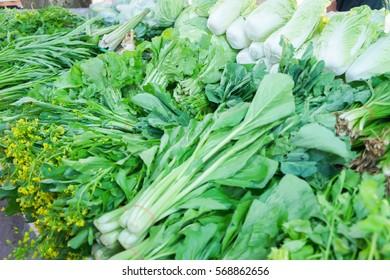 Kale Brassica alboglabra, vegetable fern Diplazium esculentum and Coccinia grandis are raw vegetables for retail sale in Thailand fresh food market