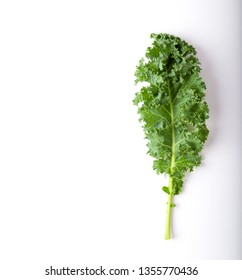 kale isolated on white background. top view