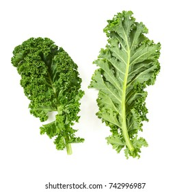 kale isolated on white background
