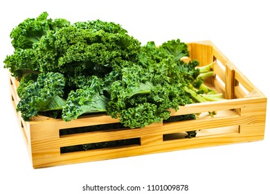 Kale or Leaf Cabbage Isolated on White Background. Selective focus.