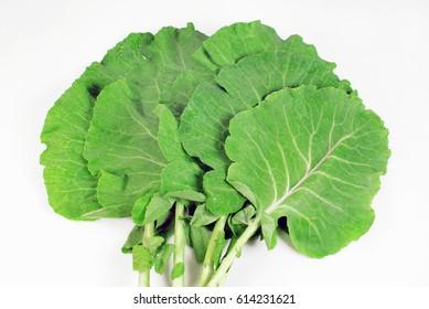 Kale leafs 1