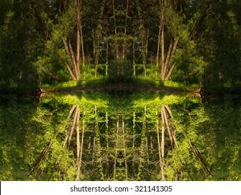 Kaleidoscope nature