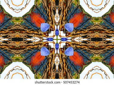 kaleidoscopic picture of Macaws, photography kaleidoscopic, abstract surrealism,  geometric composition macaw feathers