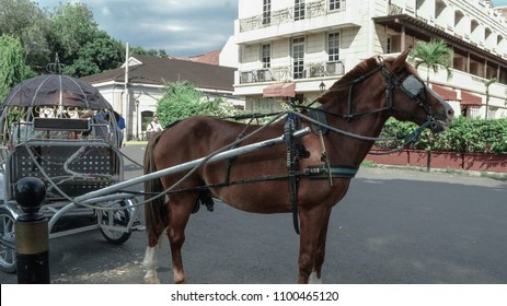 A kalesa is a horse-drawn calash used in the Philippines. It was one mode of transportation introduced to the islands in the 18th century by Spanish colonizers.