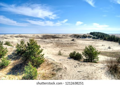 Kaliningrad region. View of the Curonian Spit, from the height of the dune Efa. Monument of nature