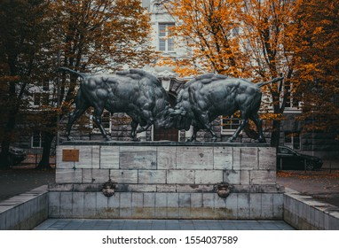 Kaliningrad, Russia - October 14, 2019: Sculpture of the Fighting bisons (german sculptor August Gaul) with the autumn trees nearby. Unveiled in 1912 in Koenigsberg (now Kaliningrad).