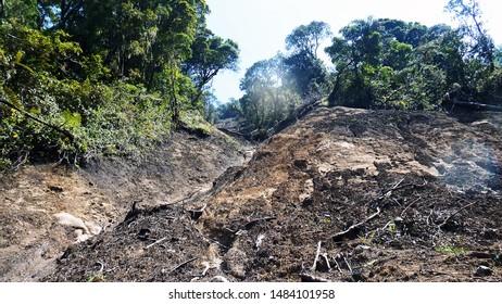Kaliwadas landslide  landslide that happen in the western slope of mount slamet, central java, carrying most materials.