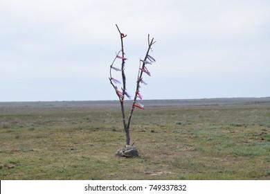 Kalmykia landscape
