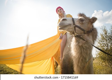Kaluga, Russia-September 8, 2019. A blonde girl in a bright yellow dress and pink scarf poses in a field with a camel. Photo session in the Oriental style