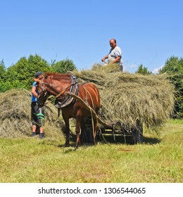 Kalush, Ukraine - July 30, 2017: Transportation of hay by a cart in the field near the town Kalush, Western Ukraine.