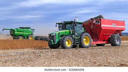 Kalush, Ukraine - September 30, 2019: Soybean reloading from the bunker of the combine to the tractor trailer in a field near the city of Kalush.