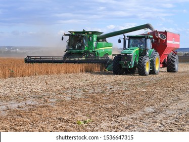Kalush, Ukraine - September 30, 2019: Soybean reloading from the tractor trailer bunker to a car trailer in a field near the city of Kalush.
