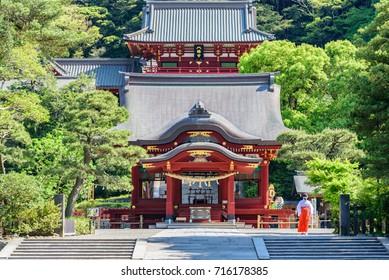 KAMAKURA, JAPAN - APR 30:Tsurugaoka Hachimangu Shrine, April 30, 2016 in Kamakura, Japan. One the most important Shinto shrine in Kamakura and an Important Cultural Property of Japan.