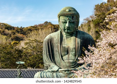 KAMAKURA , JAPAN - April 13, 2019: Kamakura Daibutsu. Landmark located at the Kotoku-in temple in Kamakura, Japan. Monumental bronze statue of Amitabha Buddha. Symbol of Japan. Big Buddha