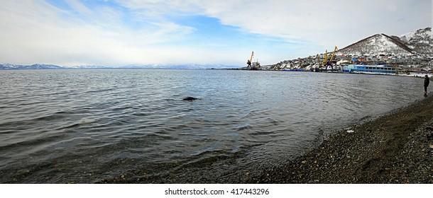 Kamchatka - Pacific Ocean - the city of Petropavlovsk-Kamchatsky