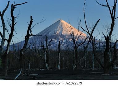 Kamchatka Peninsula. RussiaThe volcano of Klyuchevskaya Hill (4800 m) is the highest active volcano of Eurasia.