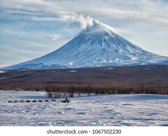 KAMCHATKA PENINSULA, RUSSIAN FAR EAST - MARCH 18, 2018:  Kamchatka Sled Dog Racing Beringia, Russian Cup. The volcano of Klyuchevskaya sopka. (4800 m) is the highest active volcano of Eurasia