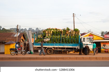 KAMPALA, UGANDA - NOV 1: A truck full of bananas on November 1, 2012 in Kampala, Uganda. Ten million tonnes of bananas are grown in Uganda every year, making it the world's second largest producer.