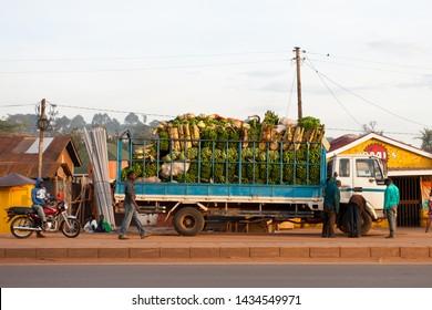 KAMPALA, UGANDA - NOV 1: A truck full of bananas on November 1, 2012 in Kampala, Uganda. Ten million tonnes of bananas are grown in Uganda every year, making it the world's second largest producer.