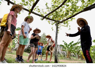 Kampot, Cambodia - May, 16th, 2019: Tourists taking a pepper tour following a local guide in La Plantation, a pepper plantation. Kampot is famous for its pepper production.
