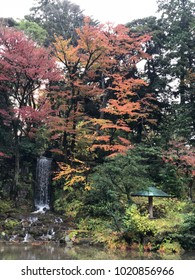 Kanazawa, Japan, November 2017, autumn leave at Kenroku-en Kanazawa, Japan. Kenroku-en is one of the three great gardens at Japan.