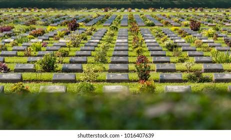 Kanchanaburi, Thailand, January 20, 2018 : Military Cemetery, Kanchanaburi War Cemetery (Don Rak)