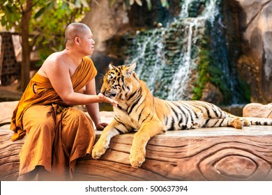 KANCHANABURI,THAILAND - MAY 8, 2015: One of the top most interesting places to visit in Thailand, buddhist temple in Kanchanaburi with monk take care about wild tiger taken to protect against poaching