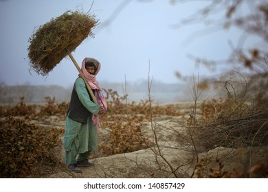 KANDAHAR, AFGHANISTAN - JANUARY 10: An Afghan Man gathers sticks to warm his hut during the cold winter months on January 10, 2011 in Kandahar Province, Afghanistan.