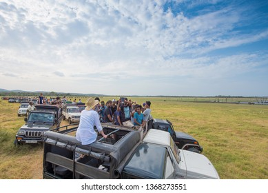 Kandula National Park, Sri Lanka : April 5th 2019. Hundreds of Land Rovers watch elephant's in the National Park. No control of how many jeeps coming into the park.