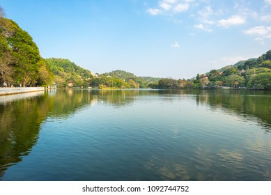 The Kandy lake is an artificial body of water in the heart of the city Kandy with lot of legends and folklore regarding the lake
