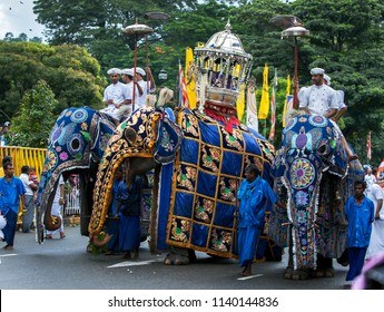 KANDY, SRI LANKA - AUGUST 11, 2014 : Ceremonial elephants parade along a street in Kandy during the Buddhist Day Perahera. This parade takes place on the last day of the Esala Perahera festival.