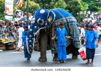 KANDY, SRI LANKA - AUGUST 11, 2014 : A ceremonial elephant is lead by mahouts along a street in Kandy during the Day Perahera. This parade takes place on the last day of the Esala Perahera festival.