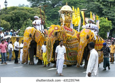 KANDY, SRI LANKA - AUGUST 11, 2014 : A trio of ceremonial elephants head along a street in Kandy during the Day Perahera on the final day of the Esala Perahera.